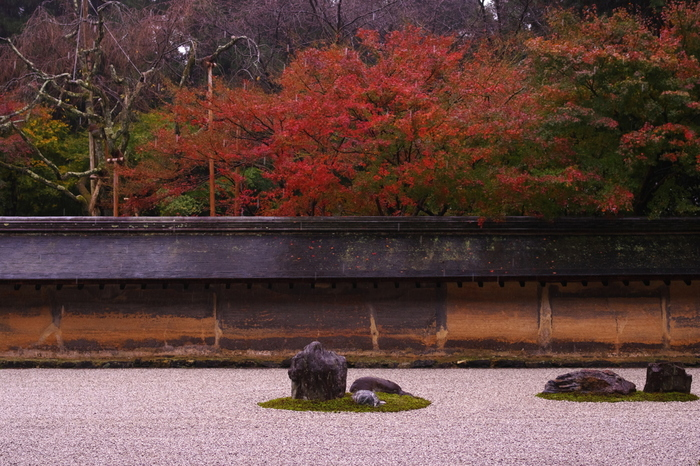 紅葉の季節も、風情があって素敵です。