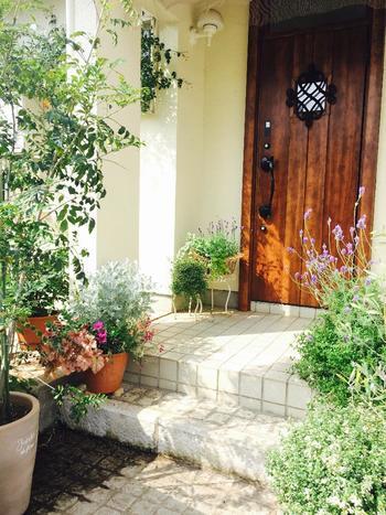 鉢植えや草花に囲まれたアプローチは、来る人を歓迎しているよう。花々が咲き、枝が整理されたガーデンは行き渡った心遣いを感じさせます。