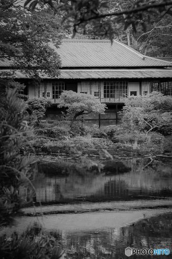 庭園内にある楽寿館は明治時代に建てられた、数寄屋造りの建築物。明治を代表する日本画家たちが描いた襖絵や天井画を楽しむことができる、レトロで美しいスポットです。