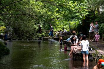 水の豊かな三島の中でも、イチオシの水遊びスポットが「源兵衛川」。楽寿園の中にある小浜池を水源として、1.5km程続く清流です。大人の女性ではなかなかできない、水遊びができる貴重な水場です。
