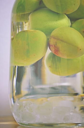 梅酒などによく使われる、スーパーなどで手軽に手に入るホワイトリカー。 クセがなく、どんな果実にも使えるから、まずはホワイトリカーで作ってみよう。