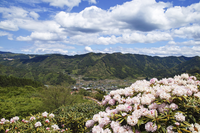 福岡県と大分県の県境に位置する星野村は、村内のほとんどが山地で占められている人口約3000人の村です。