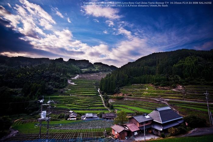 星野村を代表する景勝地の一つが石積の棚田。高低差230メートルもの急斜面に、約137段、425枚の棚田が広がっている様は圧巻です。