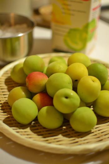また梅は果物の中でもとくに栄養価が優れており、鉄などのミネラルやタンパクや、カルシウム、各種ビタミン類なども豊富に含まれています。