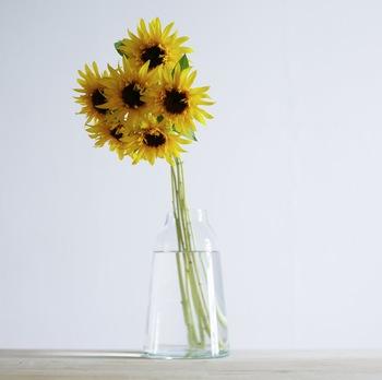 私たちが毎日鏡の前でコーディネートを考えるように、お花にも似合う花瓶とそうでない花瓶があります。せっかく飾るなら、一番その花が美しく見える花瓶に活けたいもの。ビビッドカラーが映えるヒマワリには、主張しすぎない透明なガラスの花瓶や、シンプルな白色の花瓶が◎。また、茎が長くて細いヒマワリには、口がすぼまった花瓶を使うと重心が安定して飾りやすいそうですよ。