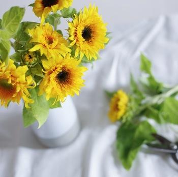 ムシムシとお部屋の中まで湿気がこもるような日にも、スッキリとこちらの心まで爽やかにしてくれるような透明や白色の花瓶。夏の花瓶選びで迷ったときは、これを選んでおいて間違いなし!ヒマワリの場合、黄色の反対色である青色の花瓶に活けるとポップな印象に。また、ブラウン系に活けると大人な印象にと。花瓶選びに慣れてきたら、いろいろ違った雰囲気を楽しむのも素敵です。