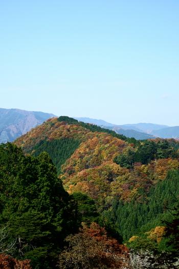 四季折々で美しい景色を見せてくれる御岳山ですが、晩秋の美しさは格別です。紅葉した樹々と、緑色の山肌、抜けるような秋の青空のコントラストが素晴らしく、眼前に広がる眺望は、まるで絵画のようです。