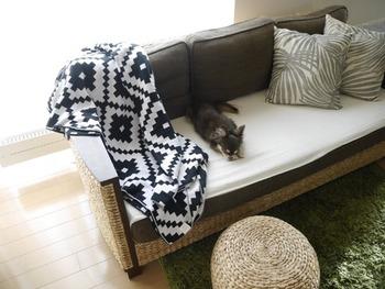 大柄のモノトーンのブランケットはソファにかけるようにしておくと、柄の全体像が見えて素敵です。