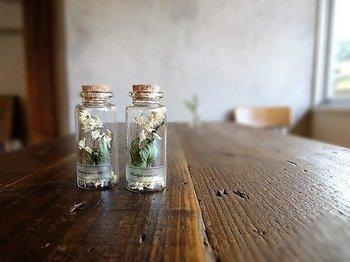 小さな小さな瓶に入ったドライフラワーのアート作品。こんなに小さなサイズでも、本棚や窓辺にそっと置いておくだけで、お部屋にアンティークな印象を与えてくれるアイテムです。贈り物にも最適ですね。