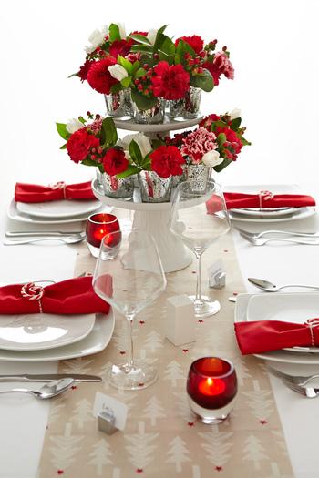 赤いお花はクリスマスにもぴったりです。