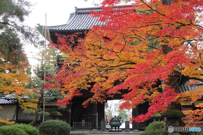 兼六園から南東に行った場所にある「天徳院」は、加賀三代目藩主の正室の菩提寺として1623年に創建されました。風雅な山門に掛かる紅葉が見事です。