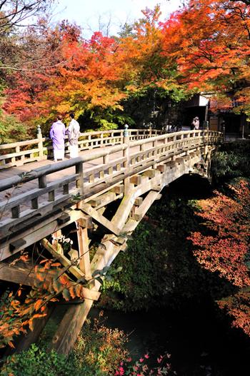 金沢周辺には温泉地もたくさんあります。こちらの「山中温泉」は、1300年もの歴史がある由緒正しい温泉地。金沢駅から特急で25分、「加賀温泉駅」からさらにバスに乗り換えて約30分の場所にあり、特に紅葉の名所として有名です。  山中温泉のシンボルは、写真の「こおろぎ橋」。江戸時代につくられた総ヒノキ造りの橋で、紅葉と風情ある橋のコンビネーションに心惹かれます。