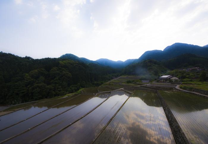 田植え直後の水田は、鏡のように空を映し出し、竹の棚田では絵画のような景色を臨むことができます。