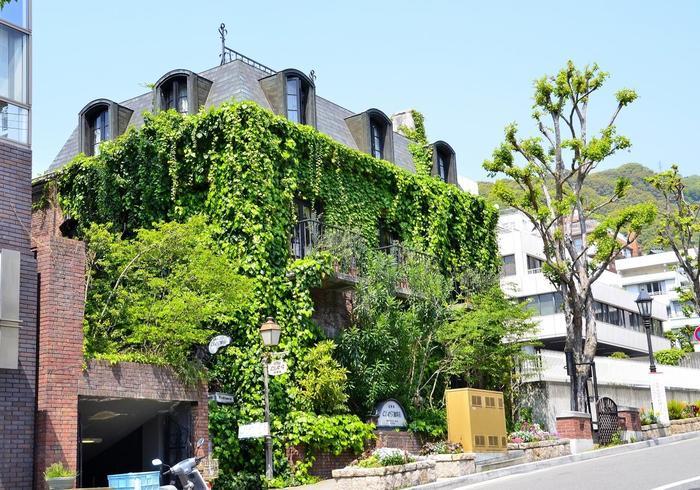 つたに覆われた印象的な建物が「神戸にしむら珈琲」。神戸の街ではおなじみのにしむら珈琲の北野のお店がこちら。