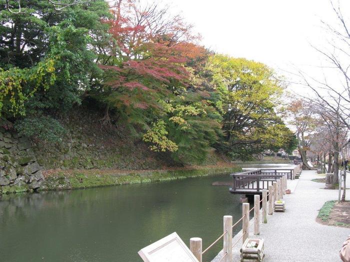 お濠と紅葉のハーモニーも素敵です。