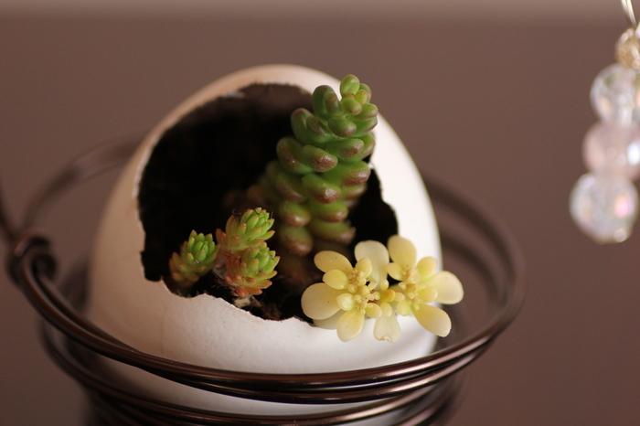 作成時は薄皮を取り除いてよく洗って下さいね。デコパージュなしで作った場合、成長してきたら卵のまま土に植えると、植物が自然に殻を割って育つそう。キリなどで底に穴をあければ、水抜き穴も作れますよ。