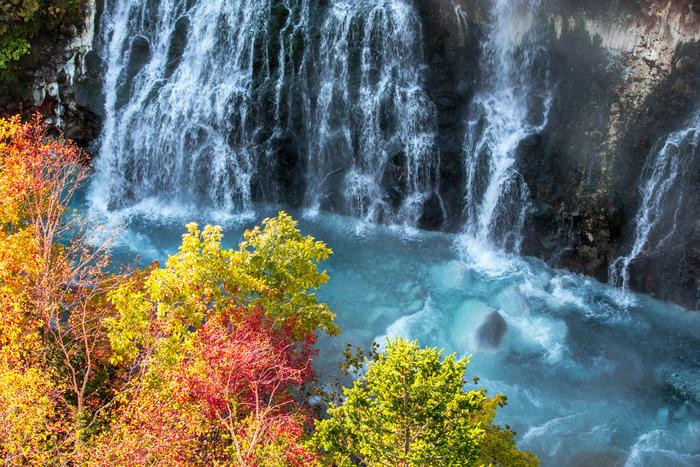 美瑛の観光スポット「青い池」につながる「白ひげの滝」は、珍しい地下水の滝。青色の池にそそぐ数十の細い滝は、ブルーリバー橋から見ることができます。