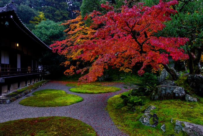 京都市伏見区の醍醐山に位置する醍醐寺は、874年に創建された真言宗醍醐派総本山の寺院です。