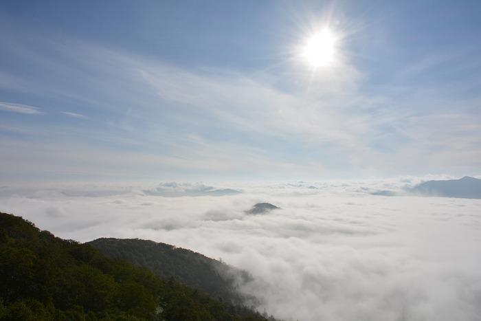 星野リゾート・トマムが誇る雲海テラスは、ご存知の方も多いのではないでしょうか。朝早くゴンドラで山頂に昇ると、ダイナミックな雲海を見ることができ、一度はこの景色を見てみたいと多くのひとが集まります。