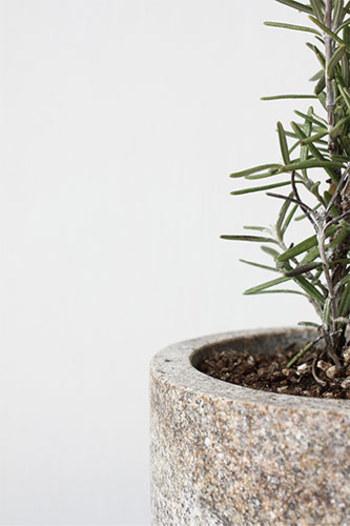 こちらの植木鉢は表面が酸化して茶色くなった、錆石と呼ばれる石から作られており、光沢が出ない程度に研磨されているので、色味がとてもやわらかなことが特徴です。