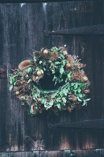 手作りしてみない? お手製「クリスマスリース」で冬のお部屋を素敵に♪