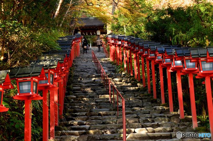京都市左京区の貴船山麓に鎮座する貴船神社は、水神、高龗神を祀る神社です。貴船神社周囲は、「京都の奥座敷」とも呼ばれており、夏は川床が敷かれ、避暑地としても知られています。