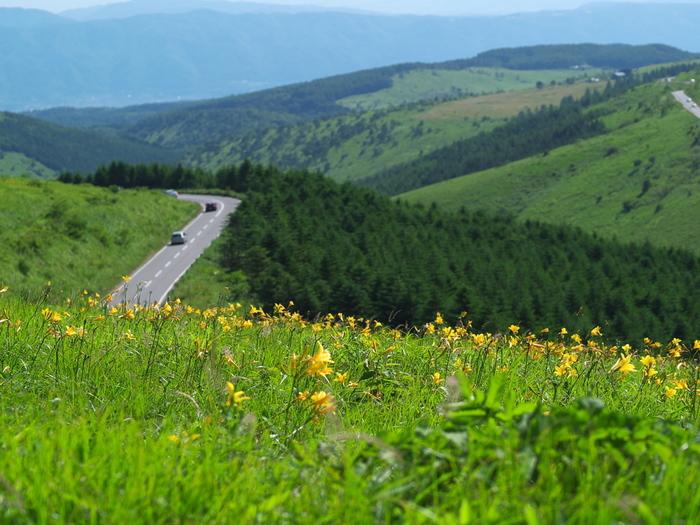 美ヶ原高原へのアクセスは、長野県茅野市の御座石神社交差点から美ヶ原高原美術館まで、全長約70kmにも及ぶ高原観光道路「ビーナスライン」を使用します。