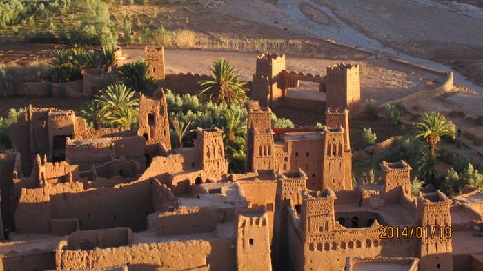 アルガンオイルは、モロッコに自生するアルガンの木から採れる貴重なオイル。抗酸化力があり、お肌を癒す効果が期待できると注目されています。