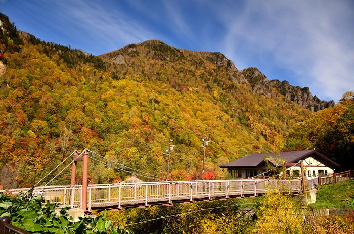 短い夏が終わり、秋が訪れる頃になると層雲峡の雄大な渓谷が見事に紅葉し、どこを切り取っても絵になる景色へと変貌します。