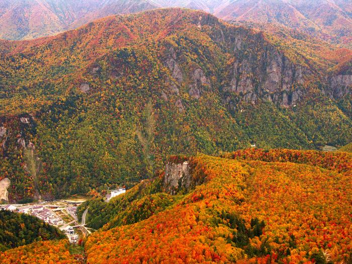 黒岳5合目からは、層雲峡を一望することができ、渓谷そのものにカラフルな絨毯を敷き詰めたかのような景色が広がっています。