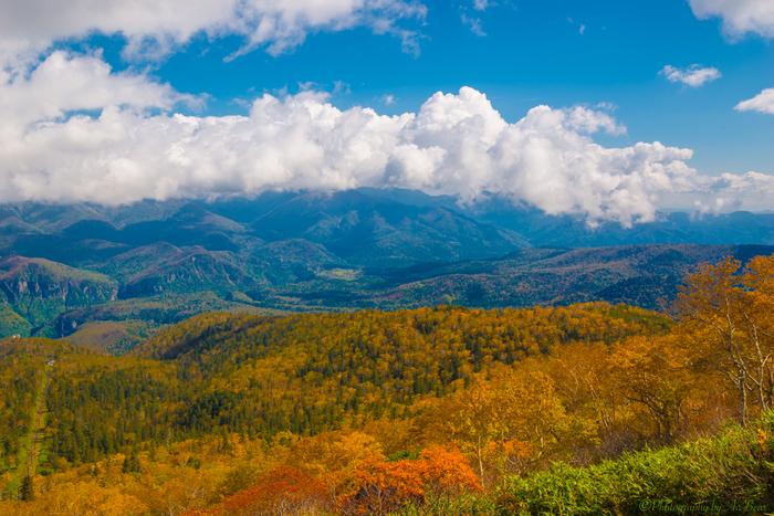 黒岳登山道からは、秋色に染まった大雪山系を見渡すことができます。色鮮やかに紅葉した峰々が果てしなく広がる様は、まるで一枚の絵画のようです。