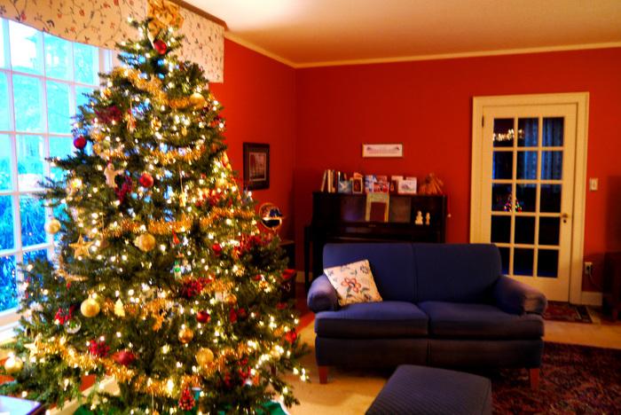 天井にまで届きそうなクリスマスツリー!大きなサイズのツリーがクリスマスのわくわくを物語っています。本物のもみの木を使うご家庭も多いそう。