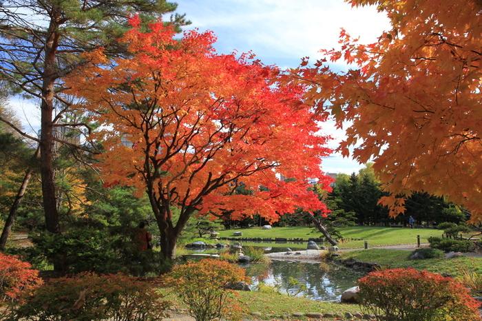 日本の都市公園100選、日本の歴史公園100選の一つである中島公園は、札幌市中央区に位置する都市公園です。