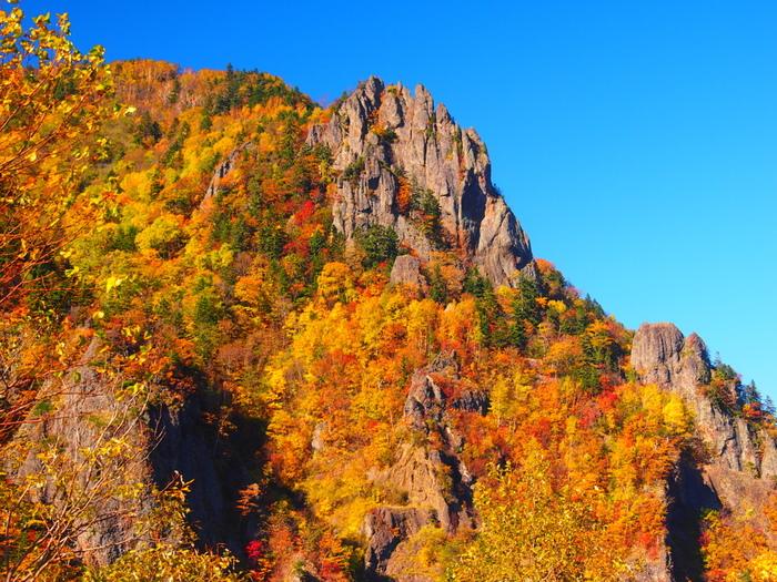 豊平峡は、札幌市内に豊かな水のめぐみをもたらす豊平川上流部に位置する峡谷です。抜けるような青空、雄々しく切り立った断崖、色鮮やかに紅葉した落葉樹が織りなす景色は絶景そのものです。