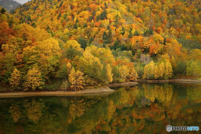 落葉樹の樹々が鮮やかに紅葉した秋の定山渓は、まるで渓谷そのものが錦を纏ったかのような美しさで、どの角度から見ても絵画のような景色が広がっています。