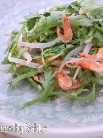 鍋に入れる野菜としてお馴染みの春菊ですが、生でいただいてもOK。春菊ともやしを混ぜて、モリモリ食べたくなるヘルシーサラダはいかがでしょう?
