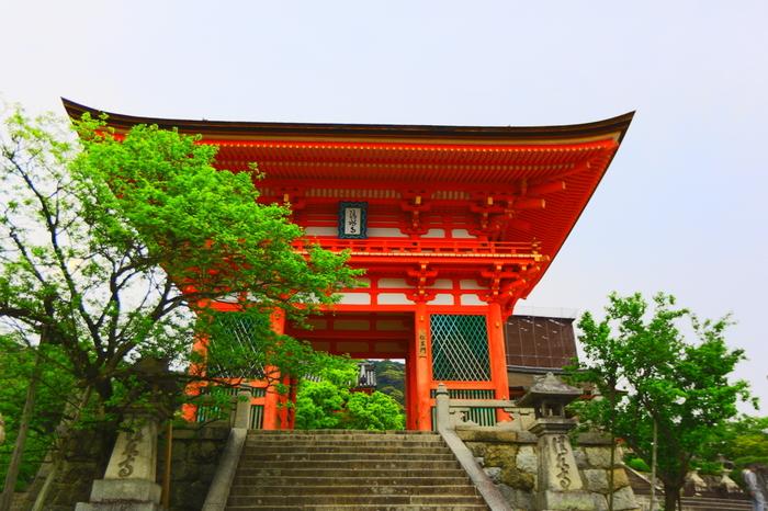 京都でも特に有名な清水寺なら、いくつかのお堂が集まっているので、それぞれの御朱印をいただけます。「西国三十三所観音霊場」「洛陽三十三所観音霊場」「法然上人二十五霊場」の札所でもあります。札所とは、お札を納めるお寺のことです。昔から参拝の際にお札を納めるという風習がありましたが、現在では参拝の印として御朱印をいただく形となっています。清水寺の各堂を巡って、御朱印を集めましょう!