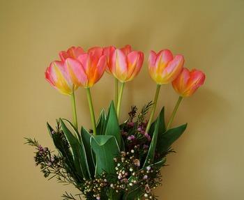 花が咲いたら切り花として楽しむのがおすすめ。