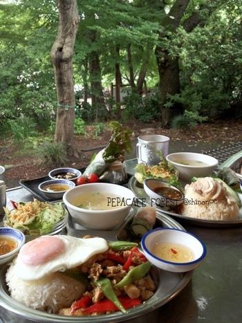 同じ井の頭公園内には、タイ料理の「ペパカフェ・フォレスト」もあります。美味しいアジアン料理をしっかり食べたいときは、こちらもおすすめ。心地よい風を感じるオープンテラスもあって、ワンちゃん連れもOK!