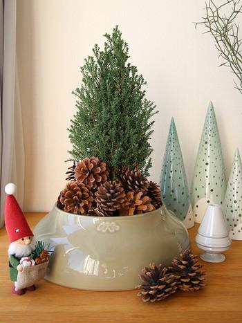 いつものグリーンも松ぼっくりをプラスするだけで、ミニクリスマスツリーに早変わり。サンタ風の小人を横に置けば、可愛いディスプレイの出来上がり♪