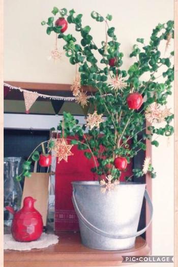 アンティークなバケツにベンジャミンバロックと赤いオーナメントを。グリーン×レッドの組み合わせは、クリスマスカラーの定番!一気にクリスマスらしくなります。
