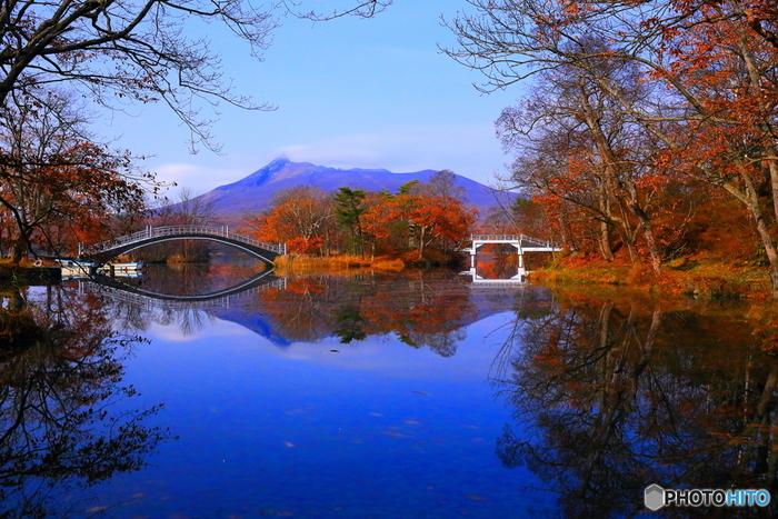 駒ケ岳をバックに美しい景観が広がる「大沼国定公園」。函館からは車で1時間弱、北海道新幹線の終着駅である新函館北斗駅からは15分という場所にあります。大小の沼と沼に浮かぶ小さな島々には橋がかけられ、散策しながら紅葉を眺めることもできます。
