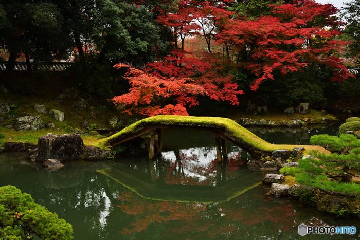 特別名勝・特別史跡に指定されている醍醐寺三宝院庭園での紅葉の素晴らしさは格別です。深紅に染まったモミジは、三宝院庭園が持つ静謐で幽玄閑寂とした趣を引き立てています。