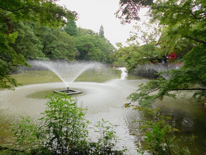天気の良い休日は、公園でゆったりと過ごすのもいいですよね。 自分のペースで散歩を楽しんだり、ベンチに座って緑に囲まれた空間でボーっとするのも気持ちがいいです。