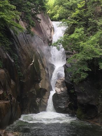 秋になると紅葉で彩られる昇仙峡。 滝と森林のコントラストが美しい山梨の秘境です。 マイナスイオンをたっぷり感じながら森林浴を楽しんでみませんか。