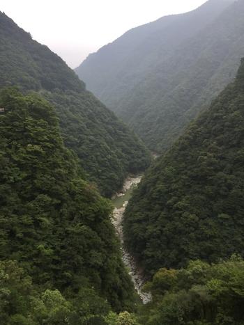 徳島県三好市の祖谷渓。 どこを見ても360°森林で、森林浴を本格的に楽しみたいときにおすすめです。