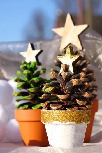 小さな素焼きの鉢に松ぼっくりを入れて、ミニツリーに♪トップには、あえて素朴な木の星を。鉢にクリスマスらしいペイントをするのも雰囲気が出ますね。