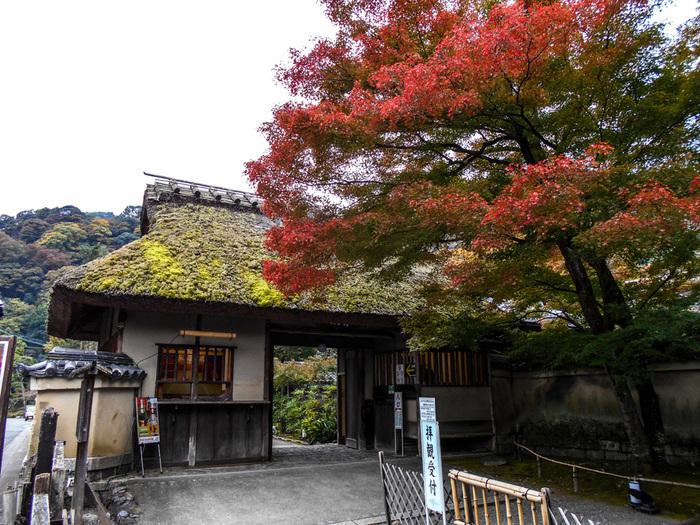 宝厳院は、嵐山を代表する観光名所の一つでもある天龍寺の塔頭で、1461年に創建された寺院です。