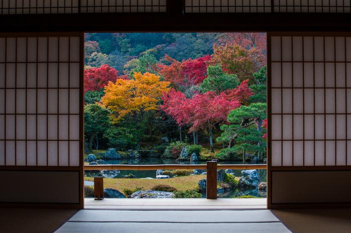 天龍寺を訪れたら、ぜひ書院から庭園を眺めてみましょう。書院に座ると、少しだけ開けられた襖間から見える庭園の景色を一幅の掛け軸の絵のように見ることができます。