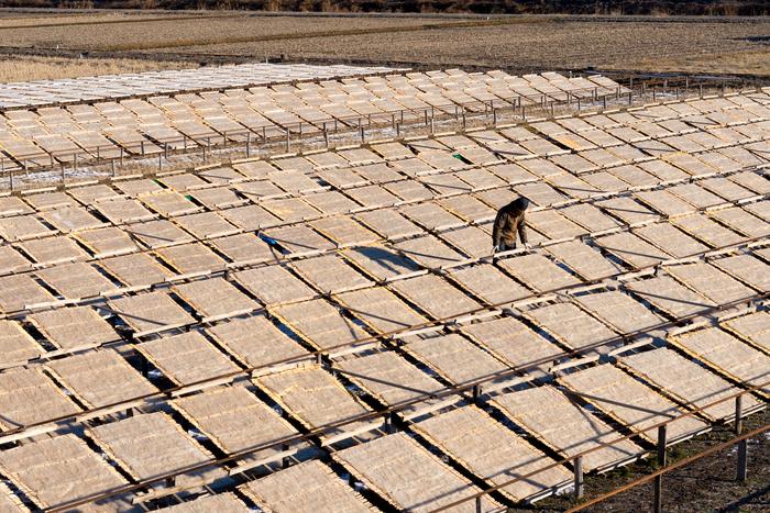 大正五年創業の小笠原商店は、諏訪地方の伝統産業である寒天製造において、創業時から変わらず「天草(テングサ)」を使用した糸寒天を、百年に渡り製造し続けてきました。